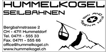 TIMBRO MANUALE 75X38 MM